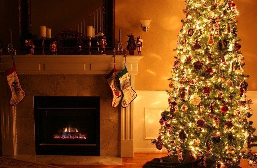 40% Off Whitfield Christmas Tree Delivery